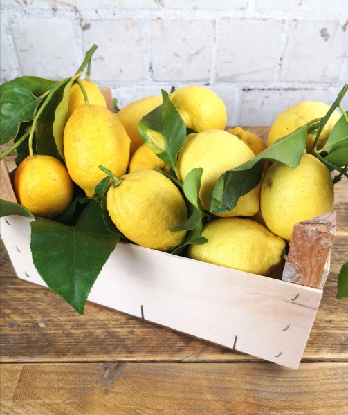 Sardische Zitronen